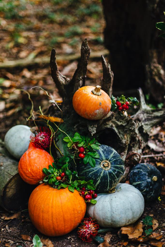 Halloween Autumn inspired wedding decor during the dreys wedding photography.