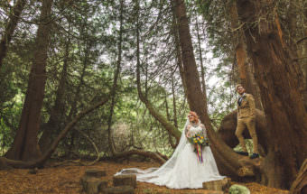 Couple in woodland during Mexican Themed Vegan Wales Wedding Photography at Buckland Hall